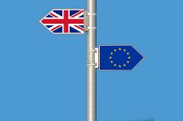 Preparing to Leave the EU image